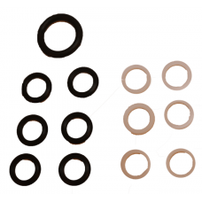INJECTOR SEAL AND RING KIT